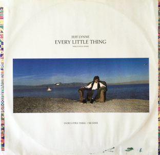 "Jeff Lynne ‎- Every Little Thing (12"") (G/G-)"